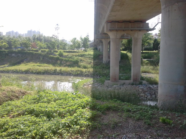 Just before Jungang Station (중앙역) a small river crosses the old line.