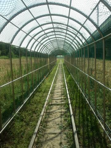 "The ""tunnel"" near the Gwangdeokdaero (광덕대로)."