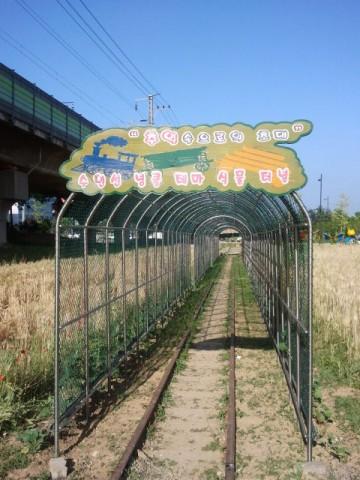 "The sign over the ""tunnel"" at Gwangdeokdaero (광덕대로)."