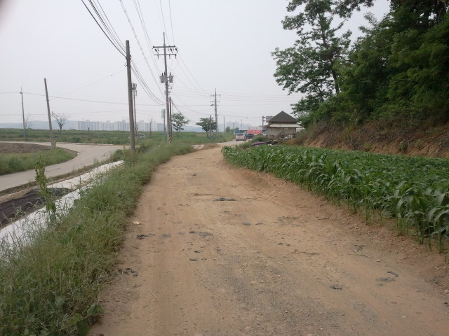 The local road however will eventually become the new subway line, a second road has already been constructed (to the left) for the local villagers. At the end, near the small house (which is not railway related), is the비봉로 (Bibong Road, also Road 69), the road into Ansan.