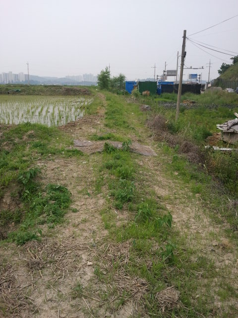 Looking towards Ansan. Just behind the trees is the last railway bridge before Ansan.