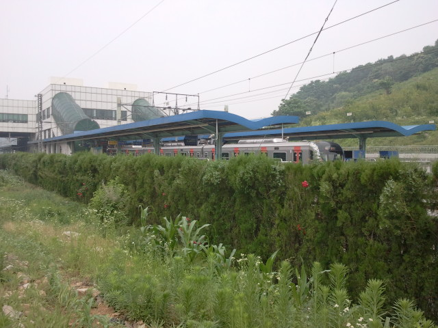 Another view of Oido station, this time towards the station buildings. The area is now a huge garden, used by the local people to grow vegetables.